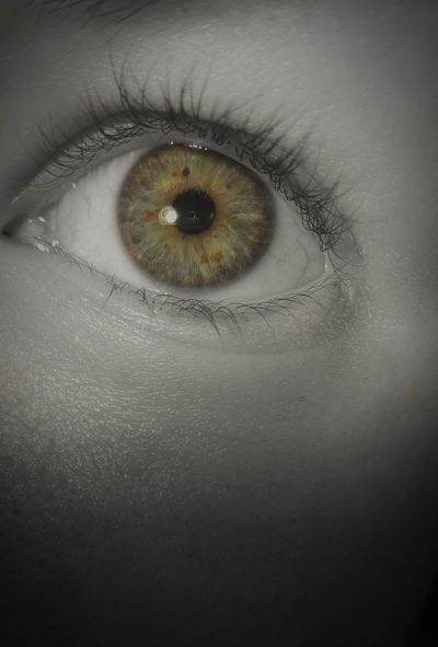 Human Eye Close-up Full Frame Human Body Part One Person Indoors  Eyelash Eyeball People Day Just Chilling Everyday Emotions Different Perspective First Eyeem Photo NiceShot Just Something Close-up Shot Seeking Inspiration Freckles Freckleseverywhere Freckles. Freckles. ❤ Eye