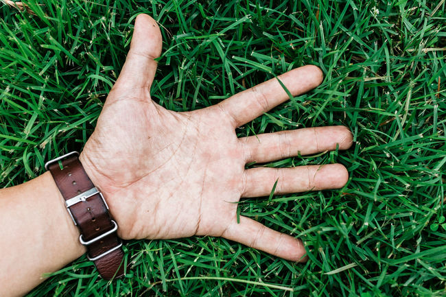 Five Fingers Relaxing Adult Close-up Day Grass Human Body Part Human Hand One Person Outdoors People Real People