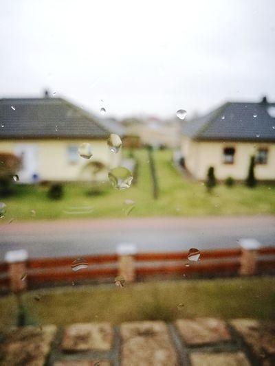 Rain Weather Rainy Season Sky Nature Nature First Eyeem Photo