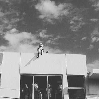 Storntrooper Starwars Hashtags Actor Actress AMC Cinema DVD Film Films Flick  Flicks Goodmovie Hollywood Instaflick Instaflicks Instagood Instamovies MOVIE Movies Moviestar Photooftheday Star Theatre Video videos