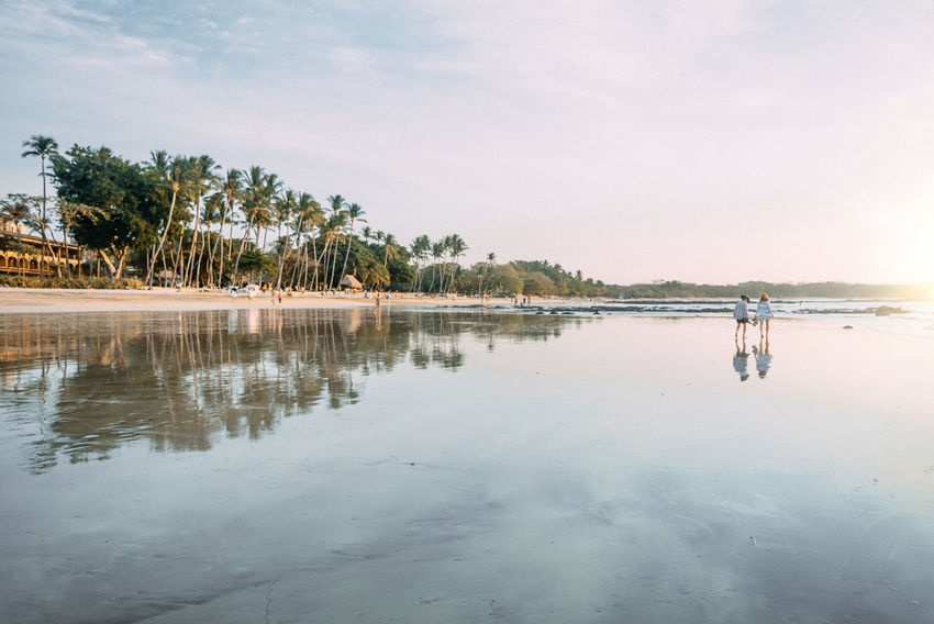 Beach Clouds And Sky Costa Rica EyeEm EyeEm Best Shots EyeEm Gallery EyeEm Nature Lover Infinity Landscape Light Light And Shadow Lights Nature Palm Palm Trees Reflection Silhouette Sun