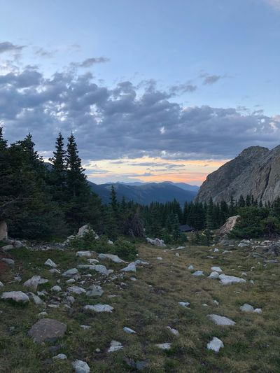 Sunset over mountain meadow Plant Sky Environment Cloud - Sky Tree Scenics - Nature Landscape Tranquility Non-urban Scene No People Tranquil Scene Beauty In Nature Sunset Land Outdoors Rock Nature Growth Field Solid
