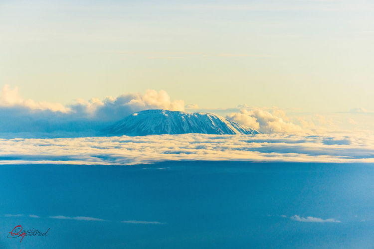 Kilimanjaro In The Clouds Aerial View Beauty In Nature Cloud - Sky Day Environment Idyllic Kilimanjaro Land Landscape Mountain Nature No People Non-urban Scene Outdoors Scenics - Nature Sky Snowcapped Mountain Tranquil Scene Tranquility Travel Travel Destinations Volcanic Crater Volcano