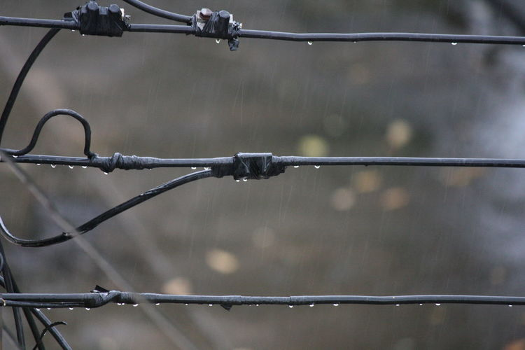 Barbed Wire Barrier Boundary Close-up Day Drop Fence Focus On Foreground Metal Nature No People Outdoors Protection Rain RainDrop Safety Security Water Wet Wire