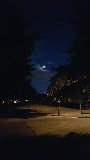 Moon, trees and clouds, park bench, trail, grass, shadows. Moon No People Urban Nightsky Walking Around Taking Photos