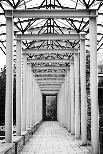Walkway of english garden