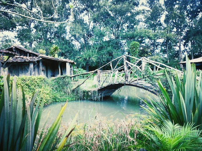 I Love Ticos Costa Rica Arquitectura Nature Amo esos detalles que muestra nuestra Tiquicia!