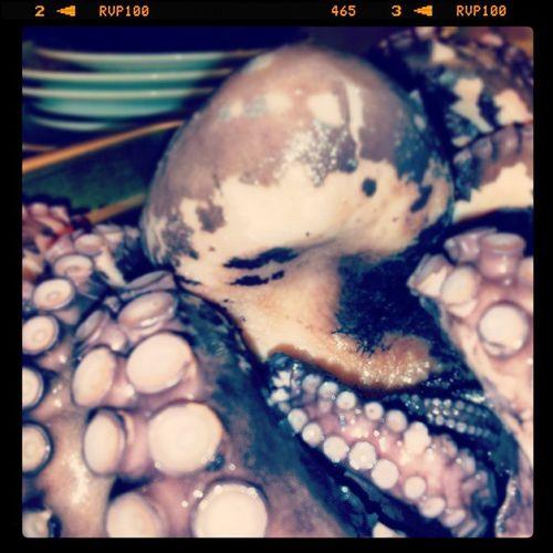 Octopus Dinner Occy Mmm Hemmingways Manly