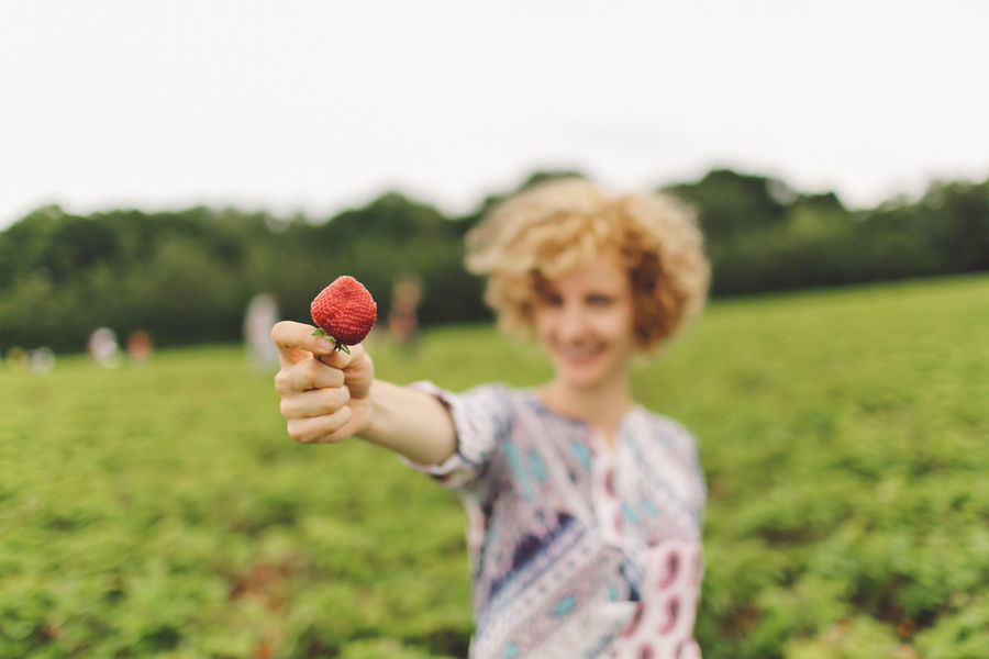 Blonde Casual Clothing Close-up Curly Curly Hair Cute Day Farm Field Focus On Foreground Gilr Grass Grassy Green Color Hand Holding Leisure Activity Lifestyles Nature Outdoors Pick Your Own Fruit Selective Focus Smiling Strawberries Strawberry Food Stories