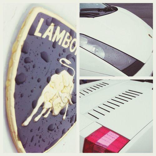 Lamborghini Luxury Car Driving