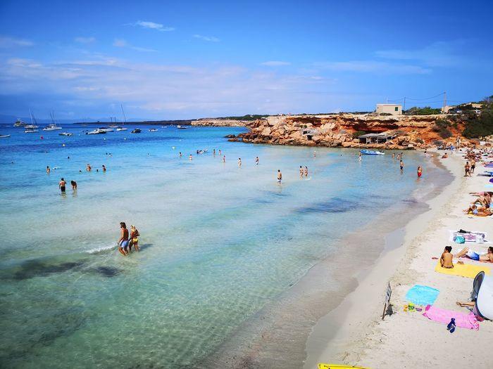 Summer Nofilters Water Sea Beach Flamingo Wave Sand Bird Blue Swimming Summer Coastline