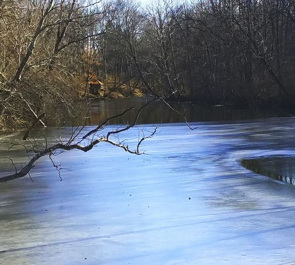 In the Mist of ForzenInTime there is a Glimpse of Freeflowing Waters WaterLovers Winterlovers MichiganWinters LowerHuronRiver EastCoastWaters Nature LakeWaters Puremichigan Bare Tree Nature Tree Water No People Outdoors Reflection Winter Beauty In Nature Snow Tranquility Tranquil Scene