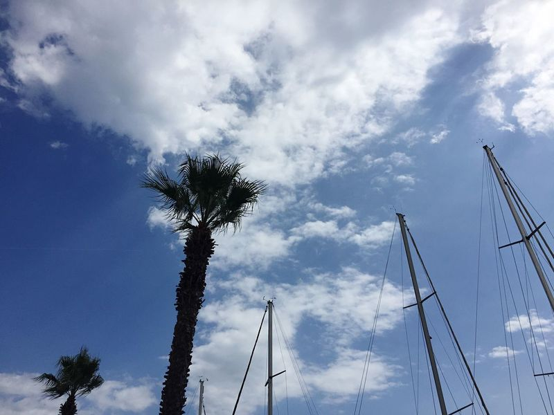 Partir loin. Sky Cloud - Sky Palm Tree Day Outdoors Nature No People Beauty In Nature Taking Photos Weather Beachphotography Summer Holiday Landscape_Collection Landscape Sea Boat Nature_collection Clear Sky Clouds And Sky Barcares