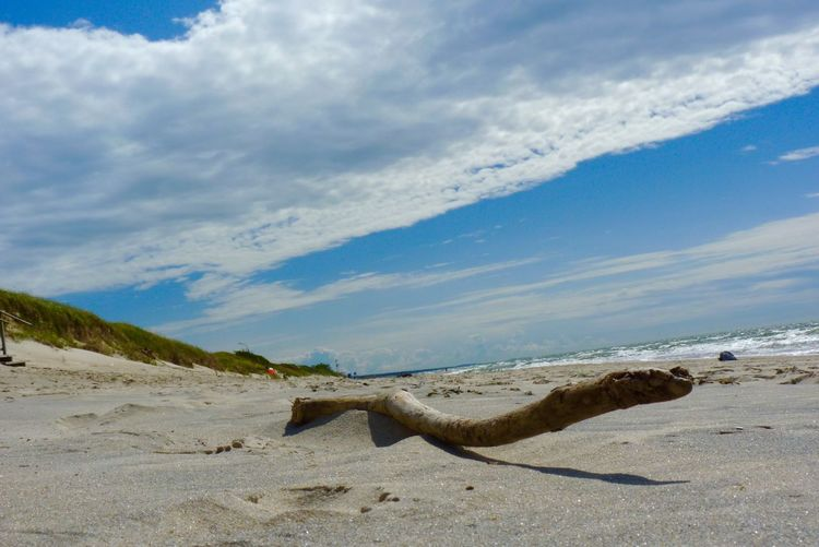 Close-up of drift wood on sand at beach against cloudy sky