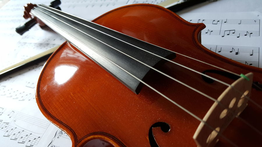 A Pianist's New Love Music Musical Instrument String Instrument Violin Close-up EyeEmNewHere