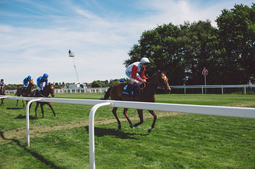 Epsom Epsom Downs Racecourse Event Horse Race Horse Racing Horse Riding Horseracing Horses Race Summer