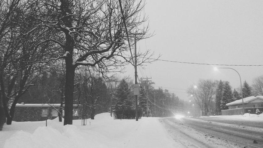 RePicture Leadership Hello World Cold Winter ❄⛄ Winter