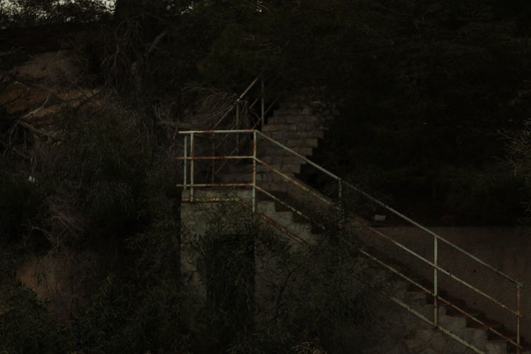 Nature Nature Photography Stairs Creepy Hand Rail High Angle View Night No People Outdoors Railing Sad Sad & Lonely Staircase Stairs Stairway Steps Steps And Staircases Tree