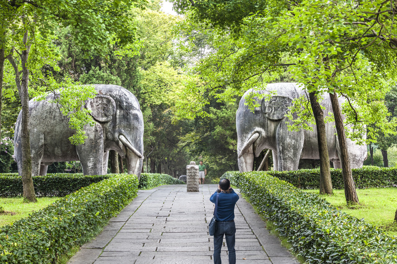 Rear View Of Man On Footpath Against Elephant Statues At Ming Xiaoling Mausoleum