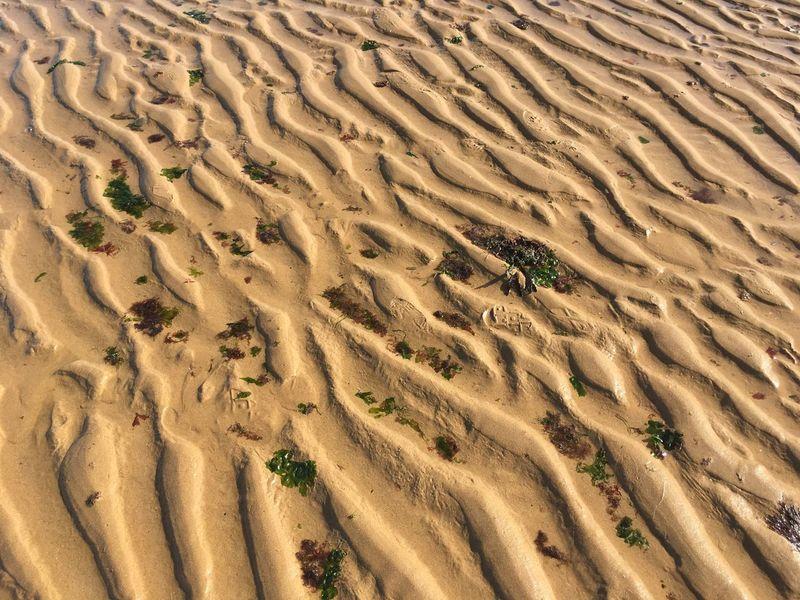 Sea Sand EyeEm Selects Sand Land Pattern Beach Scenics - Nature Landscape