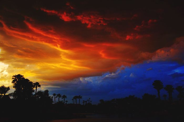 Calm before the Storm. Storm StormCloud Colours Sunset Summersunset Palm Tree Palm Springs Travel