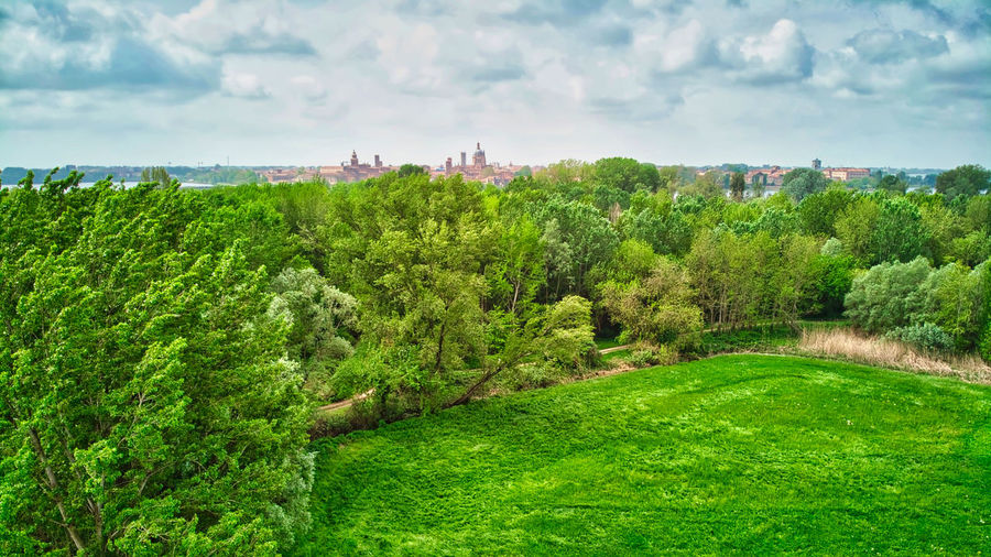 Italy, Mantua: city skyline seen from across a public park Horizontal Cloud - Sky White Clouds Field Countryside Day Daylight Drone  Aerial View Looking Down From Above  Flying Windy Canopy Mavic Unesco UNESCO World Heritage Site Skyline Renaissance Place To Visit Plant Tree Green Color Landscape Sky Nature Beauty In Nature Growth Scenics - Nature Environment Land Tranquil Scene Tranquility Architecture No People Foliage Built Structure Grass Outdoors