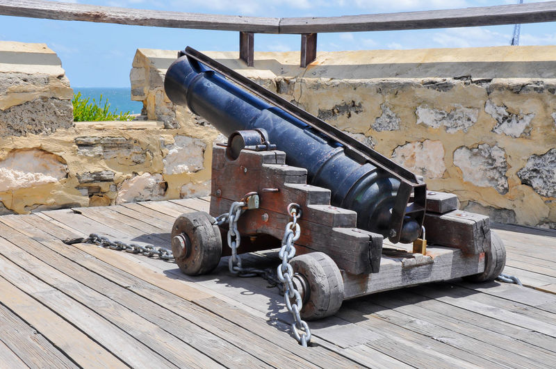 Cannon At Observation Point