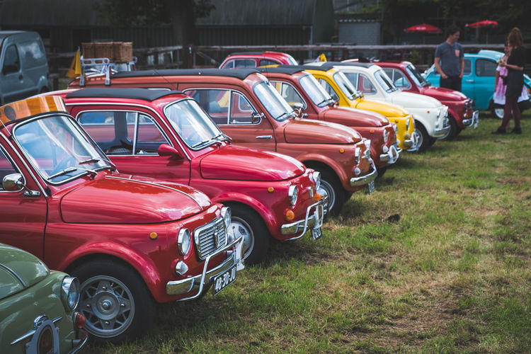 Fiat 500 club Netherlands ride. Classic Cars Colors Fiat Fiat 500 Grass Netherlands Car Color Colorful Land Vehicle Netherlands ❤ Steering Wheel Transportation