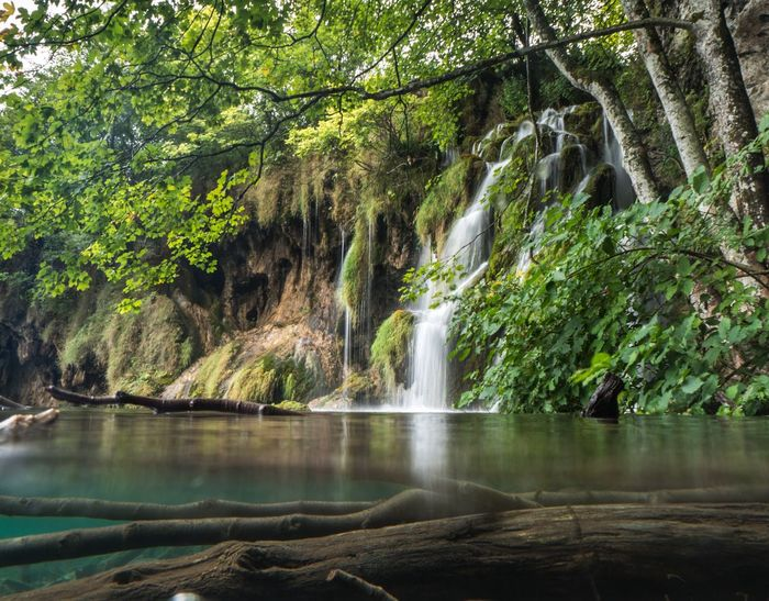 This must be... Waterfall Water Scenics Beauty In Nature Nature Tree Tranquil Scene Outdoors Tranquility Travel Destinations Day Motion Landscape Underwater Love Underwaterphotography Underwater Photography Croatia ♡ Hrvatska Croatia Plitvice National Park Plitvickajezera Plitvice Plitvice Lakes National Park Plitvicka Jezera Nacionalni Park Travel Photography