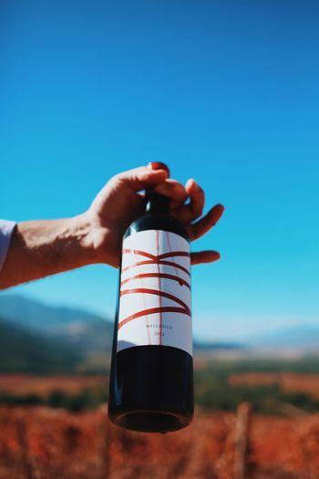 Wine Not