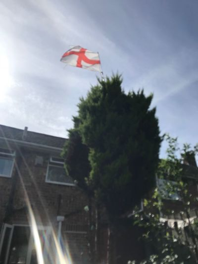 Still flying Tree Sky Plant Building Exterior Architecture Built Structure Flag