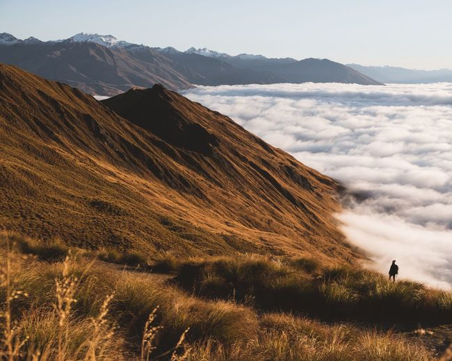 Roy's Peak Golden Mountain Morning Hike Loneliness Landscape_Collection Hikingadventures Hiking Mountain Above The Clouds Nzmustdo Hike Mount Roy Roys Peak Wanaka Mountain Sky Beauty In Nature Scenics - Nature Tranquil Scene Mountain Range Tranquility