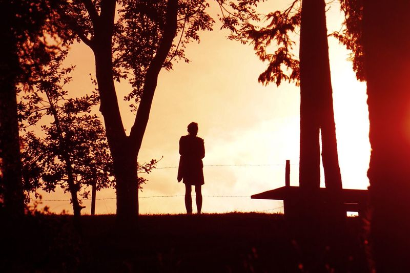 Miles Away Sunset Tree Silhouette Nature One Person Full Length Standing Real People Men Leisure Activity Outdoors Beauty In Nature Day One Man Only Sunlight Sunset_collection Orange Travel Tree Tranquil Scene Beauty In Nature Tranquility Light And Shadow