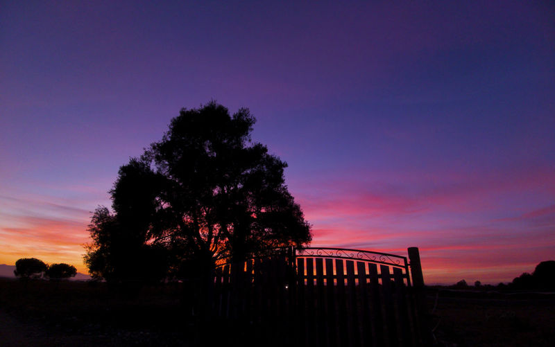 Beauty In Nature Day Illuminated Landscape Nature No People Outdoors Scenics Silhouette Sky Sunset Tranquility Tree