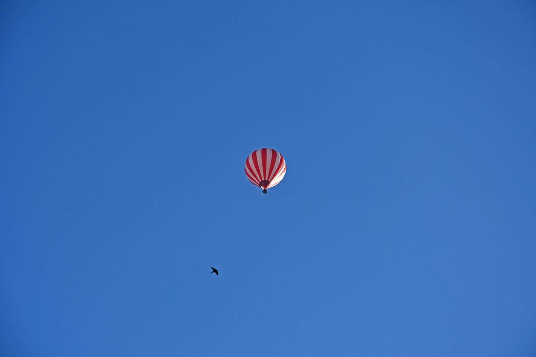 Good Morning Blue Sky Fly Away Hot Air Balloon Hot-air Balloon Sky