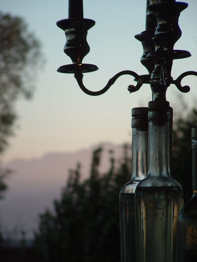 Alcohol Bottle Close-up Container Corkscrew Day Drink Dusk Focus On Foreground Food And Drink Glass - Material Low Angle View Metal Nature No People Outdoors Plant Refreshment Sky Wine Wine Bottle
