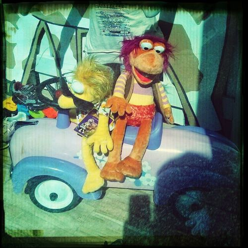 Fragglerock on Fort Street! Urban