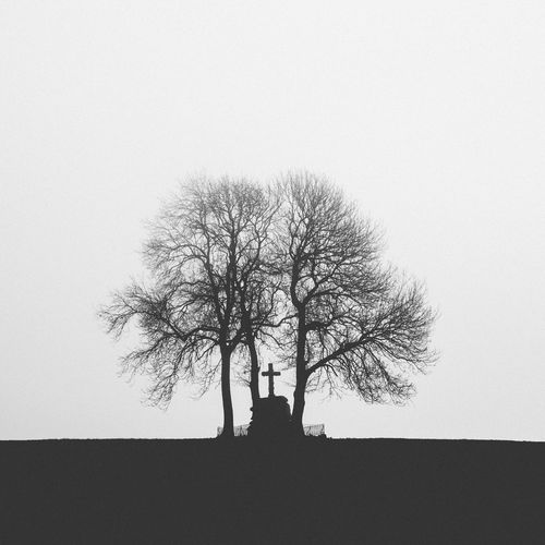 Bare Tree Beauty In Nature Branch Calvary Catholic Christianity Clear Sky Cross Day Landscape Lone Low Angle View Nature No People Outdoors Scenics Silhouette Single Tree Sky Tranquil Scene Tranquility Tree