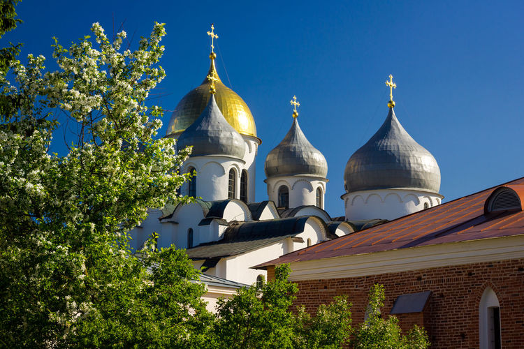 St. Sophia Cathedral and blooming apple tree. Velikiy Novgorod. Russia. Novgorod NovgorodtheGreat Sophia Architecture Belief Blue Building Building Exterior Built Structure Day Dome Low Angle View Nature No People Novgorod Great Outdoors Place Of Worship Plant Religion Sky Spire  Spirituality Sunlight Tree