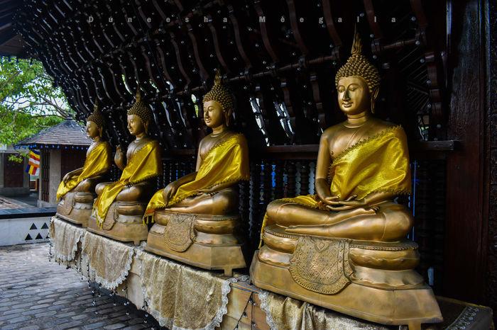 Buddhist Temple Buddhist Architecture Buddhist Pilgrimage Buddhist Statues Pilgrims Pilgrimage Buddhism BUDDHISM IS LOVE Buddhism Buddha Sri Lanka Colombo Sri Lanka Travelling Photography Travelling Worship