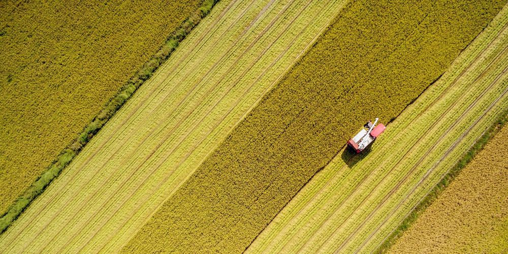 High angle view of vehicle on agricultural field