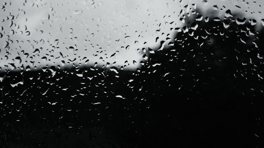 My Window Coldness In Summer Black And White Collection  B&w Photography Drops Of Water Rainy Day Cloudy Blurred Background Focused Light Nature Photography New Perspective Eyeemphotography Huaweiphotography Eyeem Collection Gray Forest Still Life Summertime Blackandwhite The Sky Is The Limit Monochrome Photography The EyeEm Facebook Cover Challenge Focus Object Beautifully Organized The City Light The Photojournalist - 2017 EyeEm Awards BYOPaper!