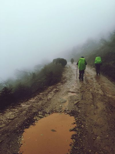 Rear view of men walking on mountain during foggy weather