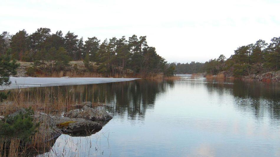 Småland Sverige No Filters  Walking Around