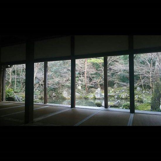 蓮華寺 2016/1/30 先月は来れず。葉も全て落ちて、少し寂しい庭。 でも相変わらず落ち着く。 月一蓮華寺 蓮華寺 京都 Kyoto Kyotojapan 寺 Temple Team_jp_ Japan Instagood 景色 Scenery 自然 Nature Icu_japan Ig_japan Jp_gallery Japan_focus
