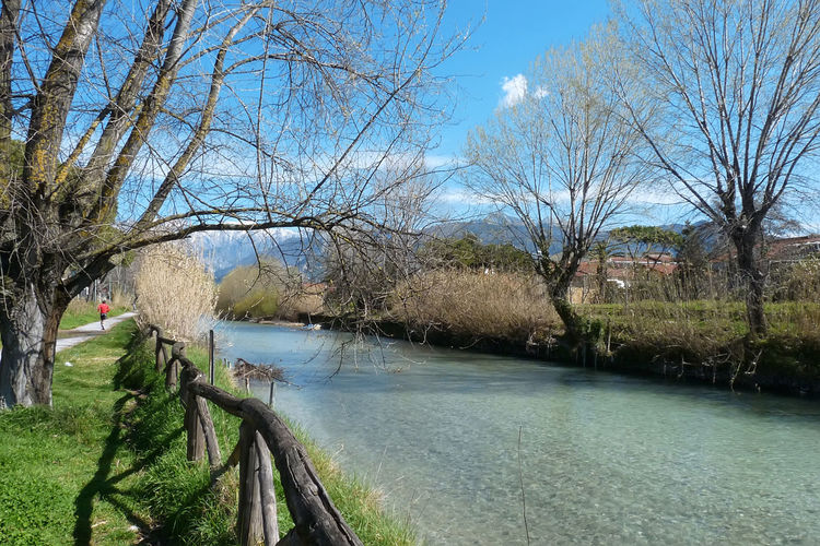 River Frigido Bare Tree Branch Clear Water Clouds Crystal Water Day Fence Fitness Frigido Mountains Nature Outdoors River River Side River Tree Runner Sky Tree Water