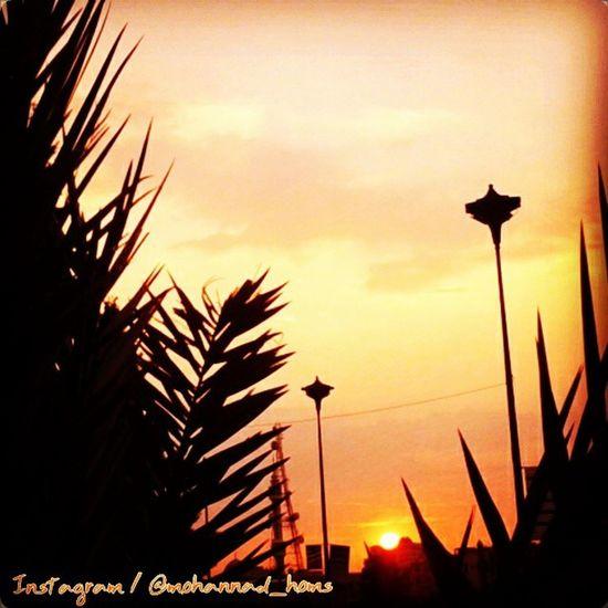 غروب_الشمس حمص