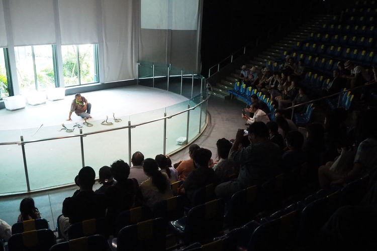Snake Show in
