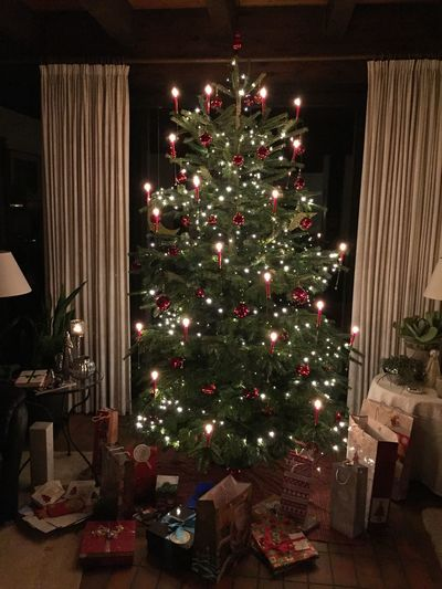 Christmas Tree Christmastime Christmas Around The World Christmas Decorations Real Candles