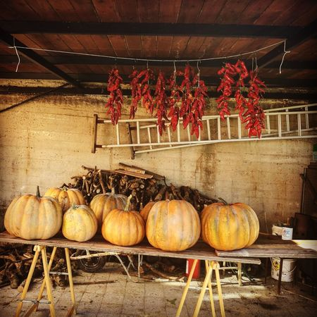 Food No People Day Relaxing Relaxing View Photooftheday NatureFreshness Nature_collection Nature Photography Italy Pumpkins Farm Farm Life Tomatoes Peppers Tradition Tradional Color Traditional Houses Food And Drink Outdoors Outdoor Photography